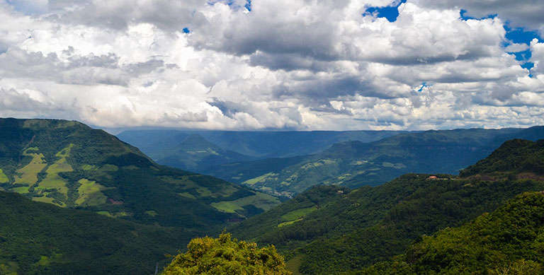 Природные ресурсы Бразилии