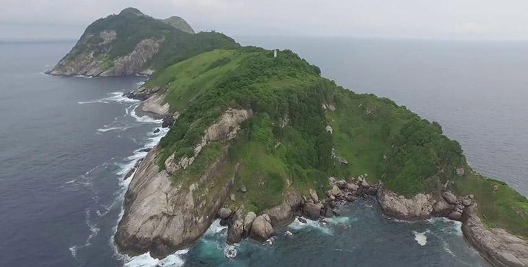 Змеиный остров в Бразилии