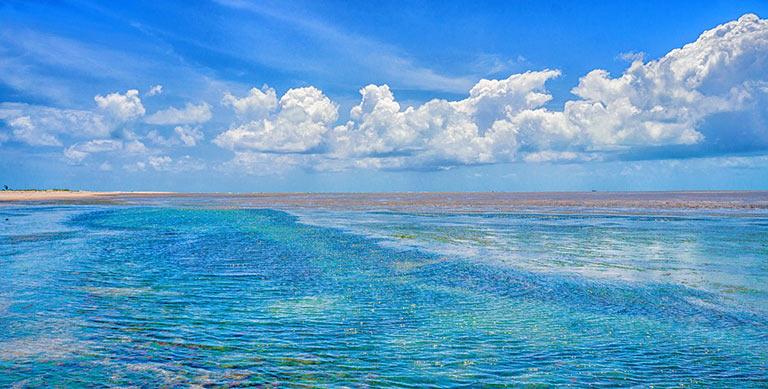 Моря и океаны, омывающие Бразилию